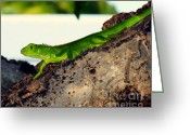 Iguana Greeting Cards - Going Green Greeting Card by Karen Wiles