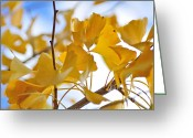 Colors Of Autumn Greeting Cards - Golden Autumn Greeting Card by Kaye Menner