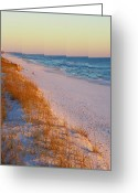 Grayton Beach Greeting Cards - Golden Beach Greeting Card by Judy Wanamaker