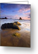 Ocean Beach Greeting Cards - Golden Coast Greeting Card by Mike  Dawson