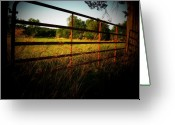 Shenandoah Greeting Cards - Golden Country Fence Greeting Card by Joyce L Kimble