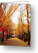 Park Benches Greeting Cards - Golden Courtyard Greeting Card by Dan Stone