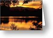 Sunset Posters Greeting Cards - Golden Day at the Lake Greeting Card by James Bo Insogna