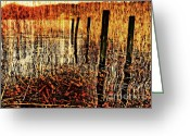 Restful Greeting Cards - Golden Decay Greeting Card by Meirion Matthias