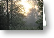 Dawn Greeting Cards - Golden Drops of Sun Greeting Card by Richard De Wolfe