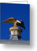 Blue Sky Photo Greeting Cards - Golden Eagle Greeting Card by Lisa  Phillips
