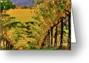 Fall Scene Greeting Cards - Golden Gate 3 Greeting Card by Mars Lasar