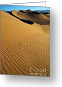 Mountains Of Sand Greeting Cards - Golden Hour Greeting Card by Bob Christopher