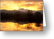 Gold Photo Greeting Cards - Golden Ponds Longmont Colorado Greeting Card by James Bo Insogna