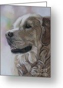 Animalportrait Pastels Greeting Cards - Golden Retriever Greeting Card by Sabine Lackner