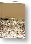Taganga Greeting Cards - Golden Sea Greeting Card by Gal Moran