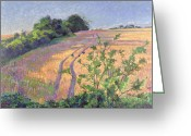 Cornfield Greeting Cards - Golden Summer Greeting Card by Robert Tyndall