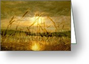 Copyright Protected. Greeting Cards - Golden Sunset Greeting Card by Barbara St Jean