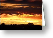 Mark Lehar Greeting Cards - Golden Sunset II Greeting Card by Mark Lehar