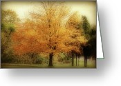Indiana Autumn Greeting Cards - Golden Tree Greeting Card by Sandy Keeton
