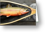 Spring Sculpture Greeting Cards - Golden Trout River Slice Greeting Card by Eric Knowlton