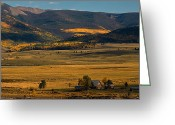 Brian Kerls Greeting Cards - Golden Valley Greeting Card by Brian Kerls