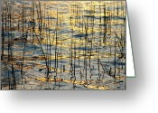 Sunset Wall Art Greeting Cards - Golden Water Lines and Ripples Greeting Card by James Bo Insogna
