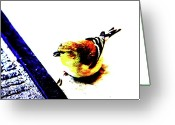 Backyard Goldfinch Digital Art Greeting Cards - Goldfinch Greeting Card by Charrie Shockey
