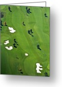 Golf Green Greeting Cards - Golf Course Greeting Card by Daniel Reiter