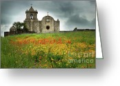 Texas Bluebonnets Greeting Cards - Goliad in Spring Greeting Card by Jon Holiday