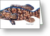 Mako Shark Greeting Cards - Goliath Grouper Greeting Card by Carey Chen