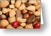 Nutty Greeting Cards - Gone Nuts Greeting Card by Salim October