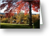 College Campus Greeting Cards - Gonzaga with Autumn Tree Canopy Greeting Card by Carol Groenen