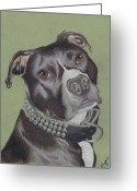 Pit Bull Greeting Cards - Gonzo Greeting Card by Stacey Jasmin