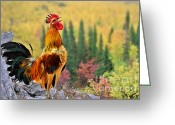 Alarm Greeting Cards - Good Morning America Greeting Card by Christine Till