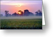 Darken Greeting Cards - Good Morning Beautiful Greeting Card by Brittany H