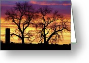 Sunset Wall Art Greeting Cards - Good Morning Cows Colorful Sunrise Greeting Card by James Bo Insogna