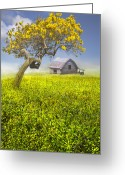 Red Roof Greeting Cards - Good Morning Spring Greeting Card by Debra and Dave Vanderlaan
