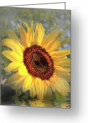 Good Morning Greeting Cards - Good Morning Sunshine Digital Painting Greeting Card by H G Mielke