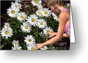 Sunshine Daisy Greeting Cards - Good Morning Sunshine Greeting Card by Methune Hively
