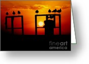 Paradise Pier Greeting Cards - Goodnight Gulls Greeting Card by Karen Wiles