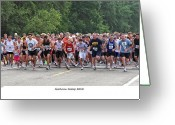 Runner Greeting Cards - Goodview Gallop 2010 Greeting Card by Al  Mueller