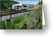 Southern Rocky Mountains Greeting Cards - Goose on Cascade Trestle Greeting Card by Ken Smith