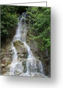 Cascading Greeting Cards - Gorge Creek Falls - North Cascades National Park WA Greeting Card by Christine Till