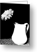 Decor Floral Picture Cards Greeting Cards - Gorgeous Gabbi In Black And White Greeting Card by Marsha Heiken