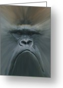 Apes Greeting Cards - Gorilla Freehand abstract Greeting Card by Ernie Echols