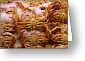 Pike Seafood Market Greeting Cards - Got Crabs Greeting Card by Christie Starr Featherstone