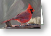 Cardinal Greeting Cards - Got Nuts Greeting Card by Patti Siehien