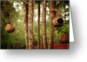 Treasures Greeting Cards - Gourd trio Greeting Card by Toni Hopper