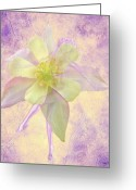  Digital Collage Greeting Cards - Grace Greeting Card by Torie Tiffany