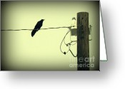 Telephone Pole Greeting Cards - GRACKLE au VIGNETTE Greeting Card by Joe JAKE Pratt
