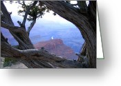Grand Canyon Greeting Cards - Grand Canyon 45 Greeting Card by Will Borden
