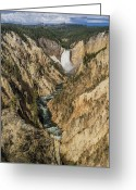Lower Yellowstone Falls Greeting Cards - Grand Canyon of the Yellowstone and Yellowstone Falls Greeting Card by Greg Nyquist