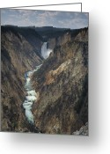 Lower Yellowstone Falls Greeting Cards - Grand Canyon Of The Yellowstone Greeting Card by Don Smith