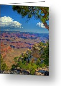 Desert Southwest Greeting Cards - Grand Canyon Vista Greeting Card by William Wetmore